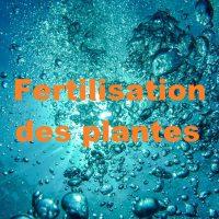 Fertilisation des plantes