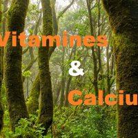 Vitamines et Calcium