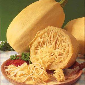 Courge Spaguetti  BIO – pièce environ 1,5 – 2kg