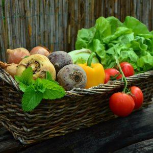 LE PANIER DE SAISON : 1 Batavia –  500g Haricots Verts –  1kg Tomates –  1kg  carotte – 1kg Pomme de Terre Charlotte