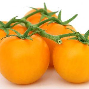 Tomates Jaunes  BIO – 1kg