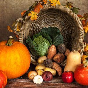 Panier fruits/légumes – le tout gros 15€
