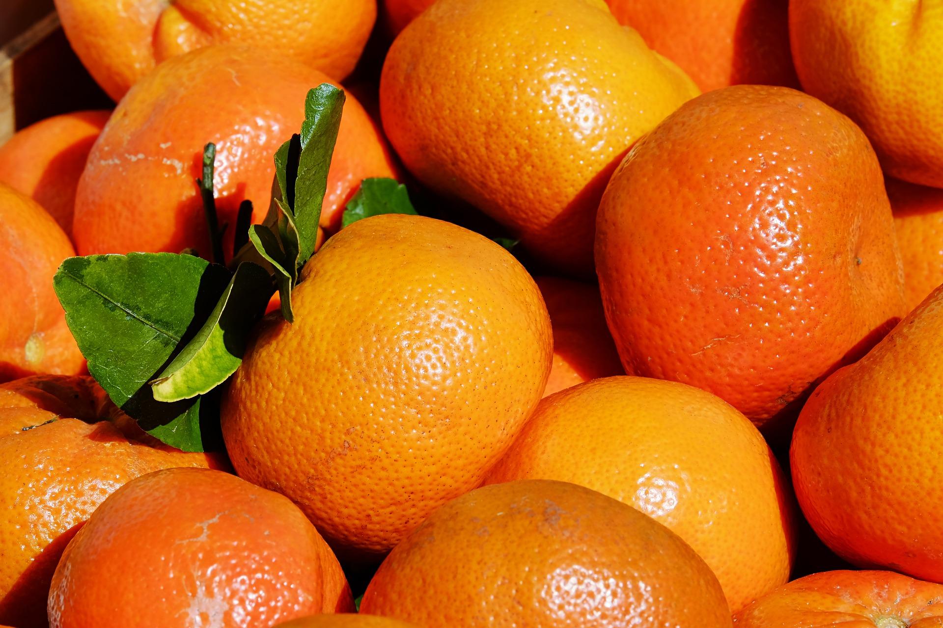 Clementine de Corse BIO – 500g
