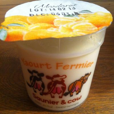 Yaourt Saunier & Cow – Mandarine